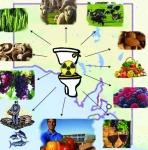 South Australia nuclear toilet