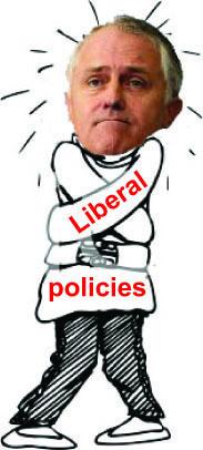 Turnbull straightjacket