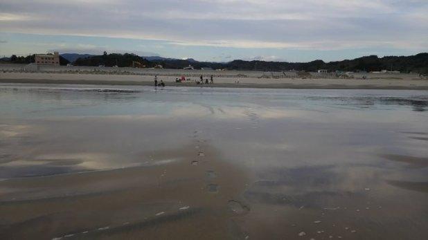 beaches contaminated 2 oct 2017
